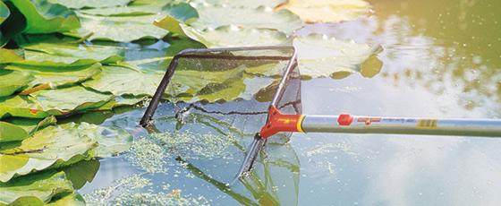 Alles für die perfekte Teichpflege