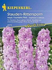 Kiepenkerl Del.Magic Fountains Pink