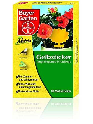 Bayer gelbsticker 10 st ck for Gelbsticker neudorff